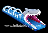 Inflatable Shark Belly Water Slide,Water slide-20
