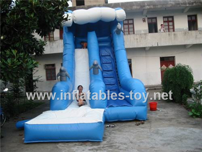 Inflatable water slide,CLI-1007
