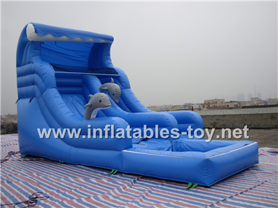 Inflatable dolphin water slide,CLI-1005
