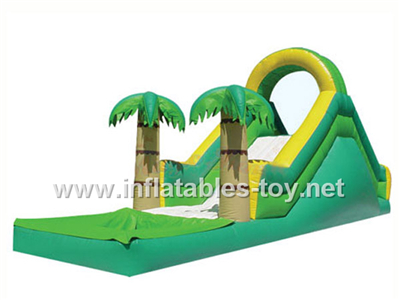 Inflatable water slide,Waterslide-12