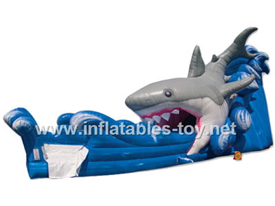 Inflatable water slide,Waterslide-4